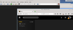 Plex would only load in Firefox for some reason...